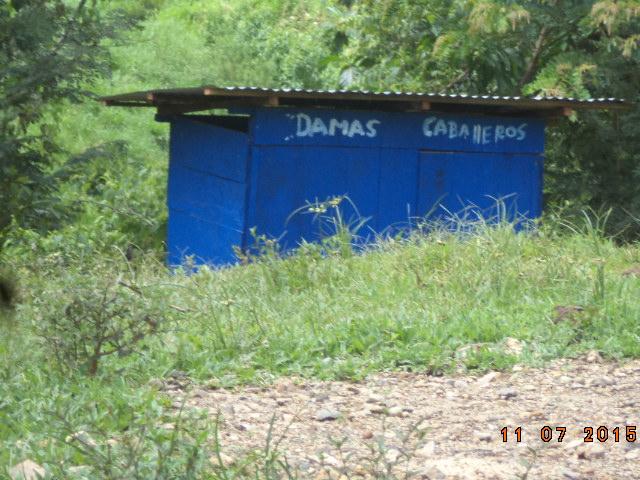DSC09536
